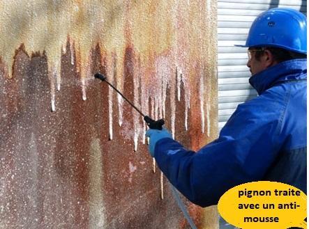 Nettoyage pignon anti mousse 1